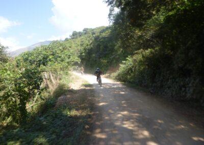 Death Road 22 (Grande)